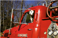 Dalmatian in Red Fire Truck